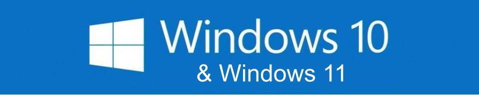 Windows 10 / 11